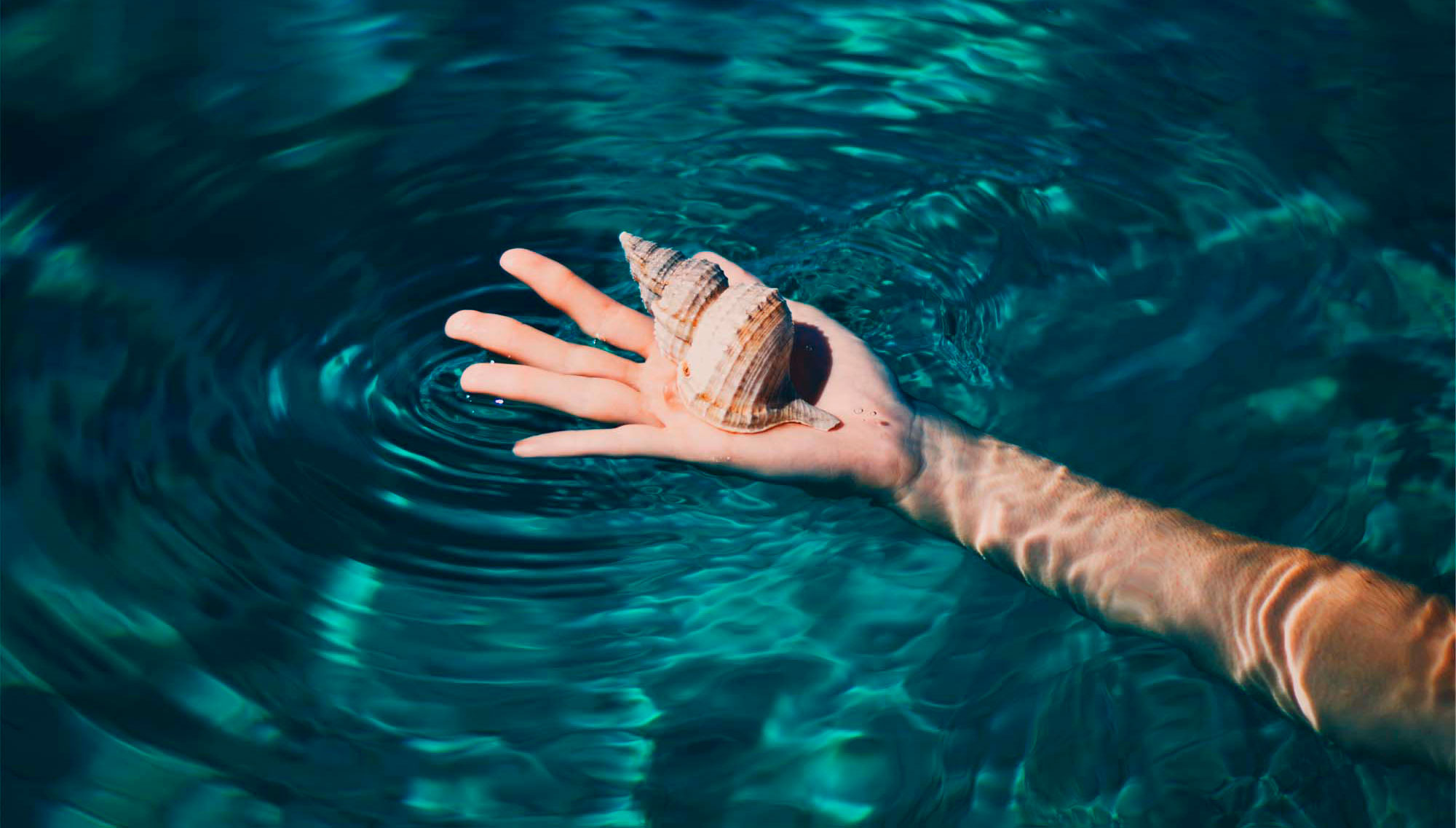 Person holding a sea shell on surface of pool water